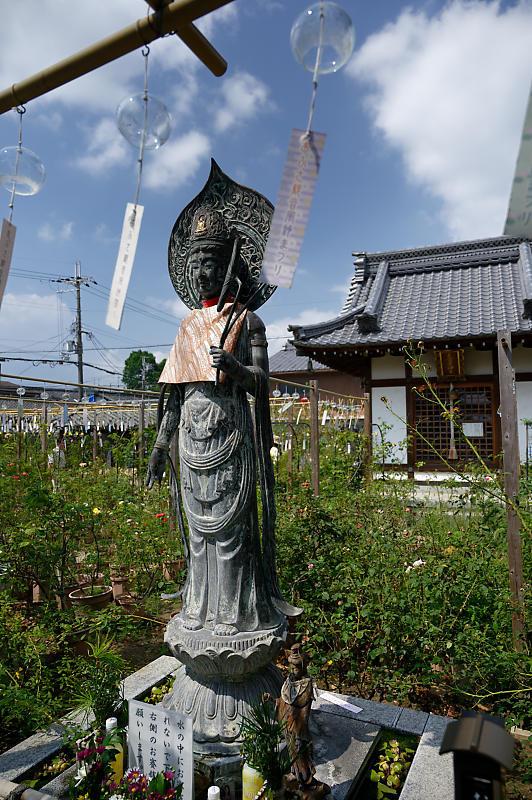 風鈴祭り@おふさ観音寺_f0032011_18275987.jpg