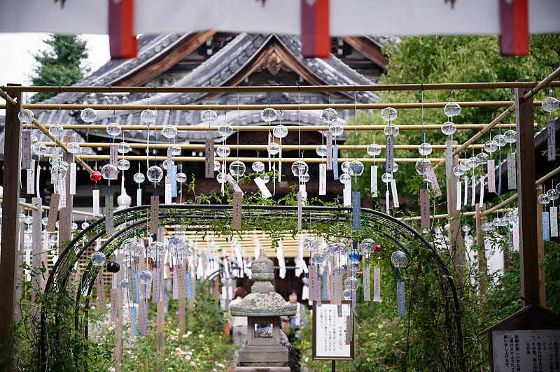 風鈴祭り@おふさ観音寺_f0032011_18280012.jpg