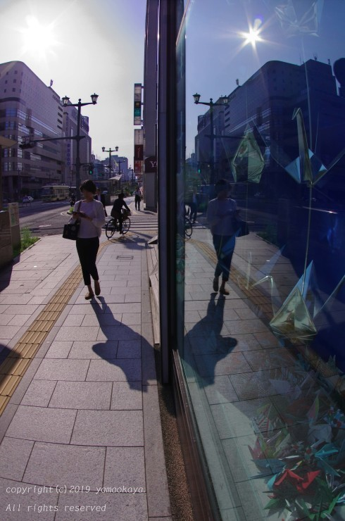 ガラスの中の_d0309612_23402745.jpg
