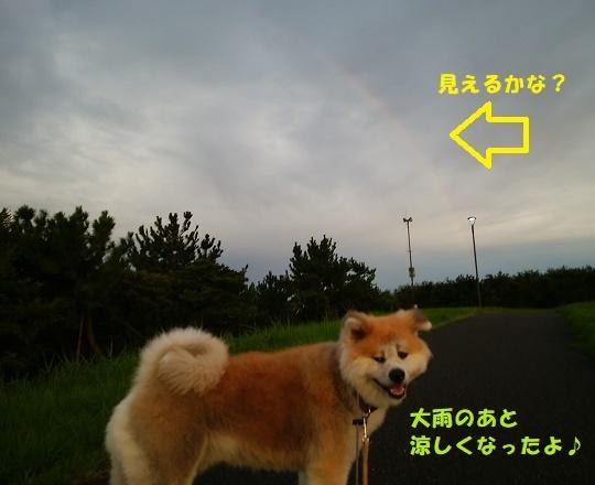 f0121712_00083057.jpg