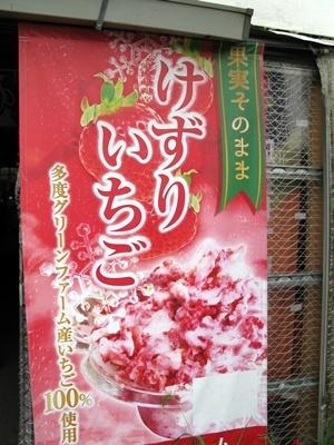 けずりいちごと園芸店巡り_f0129726_22024472.jpg