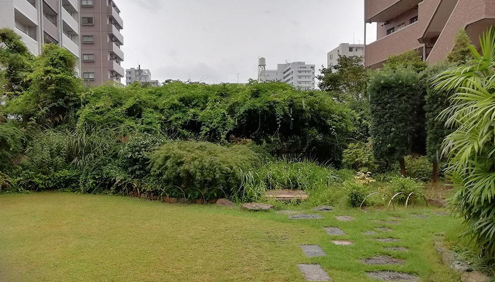 今日は雨模様。_b0020130_13350829.jpg