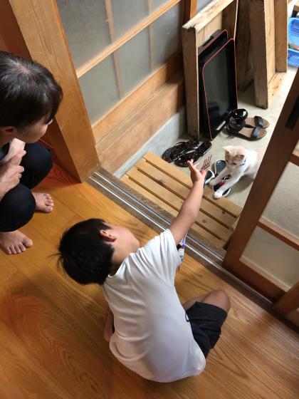 若狭湾★民宿旅(1日目)_c0113733_00493017.jpg