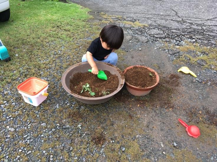 庭の遊び場づくり_d0386342_21573469.jpg