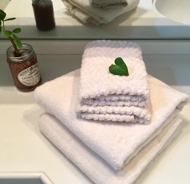 New towel   二人を待っていたけれど・・・_a0165160_23332315.jpg