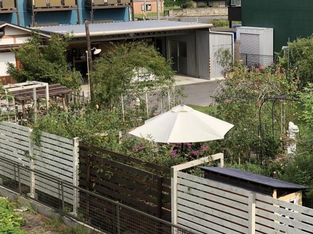 2階から見た庭の様子_a0243064_19060211.jpg