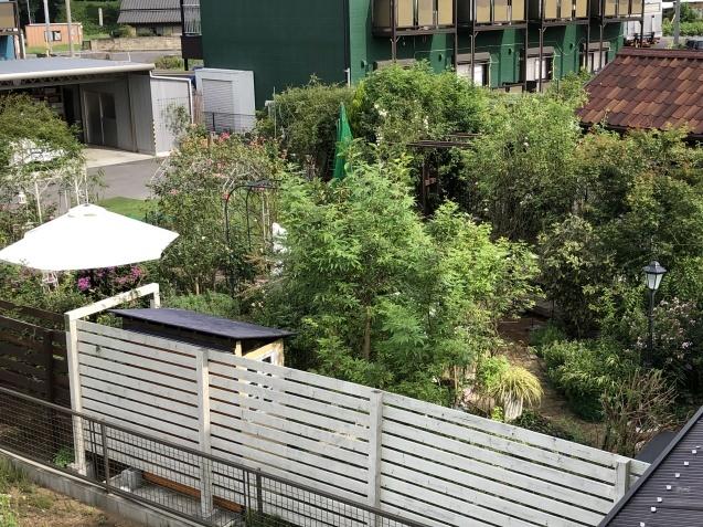 2階から見た庭の様子_a0243064_19062588.jpg