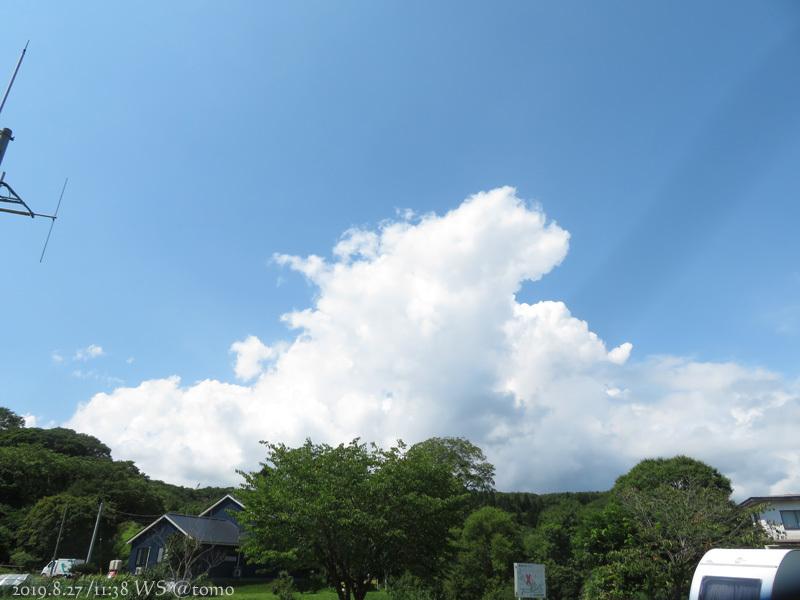 夏空に蝶々_f0067179_22071536.jpg