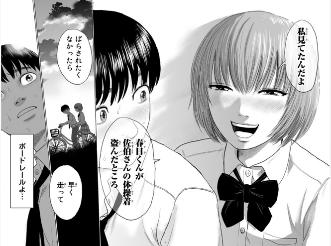 漫画「惡の華」について_e0411899_16193931.jpg