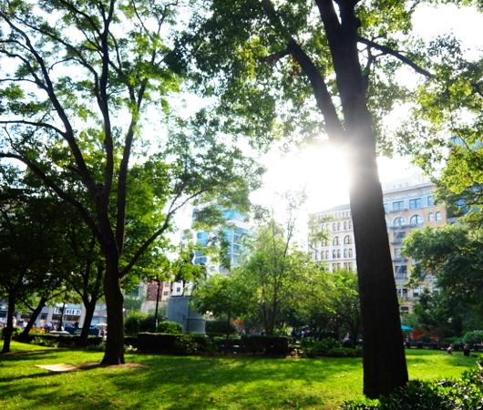 夏のニューヨーク、ユニオン・スクエア公園の様子_b0007805_08472948.jpg
