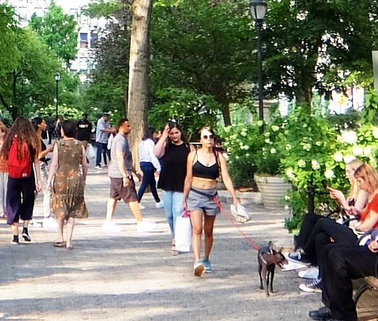 夏のニューヨーク、ユニオン・スクエア公園の様子_b0007805_08493549.jpg