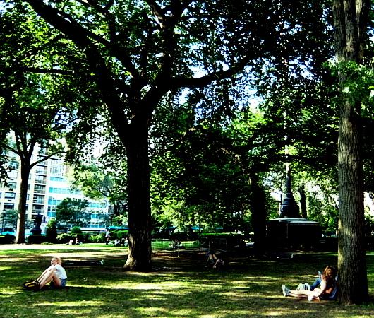 夏のニューヨーク、ユニオン・スクエア公園の様子_b0007805_08510620.jpg