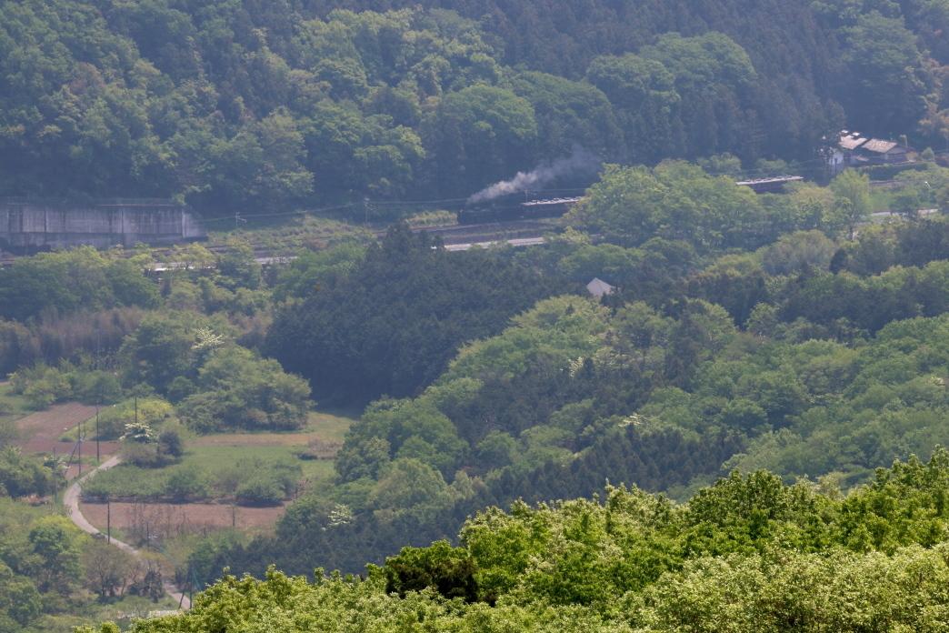 新緑の中の汽車は来春は見られない - 2019年春・秩父鉄道 -_b0190710_21452305.jpg