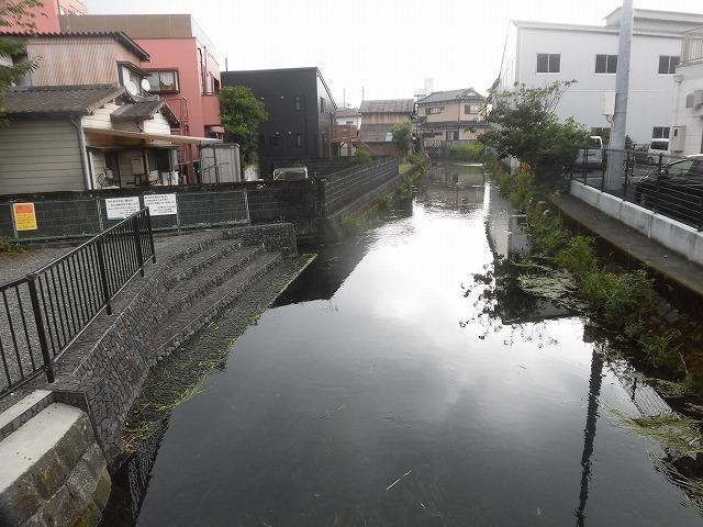 三島・桜川の川床(かわどこ) 田宿川でもやってみたい!_f0141310_07464468.jpg