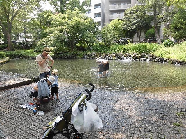 三島・桜川の川床(かわどこ) 田宿川でもやってみたい!_f0141310_07465168.jpg