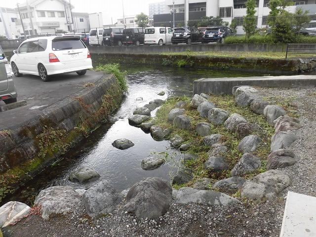 三島・桜川の川床(かわどこ) 田宿川でもやってみたい!_f0141310_07475129.jpg