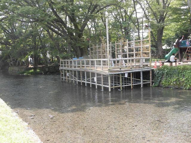 三島・桜川の川床(かわどこ) 田宿川でもやってみたい!_f0141310_07482880.jpg