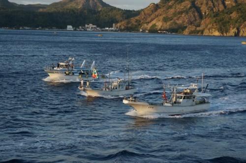 豪華客船に別れを惜しむ漁船達_f0055131_15021004.jpg