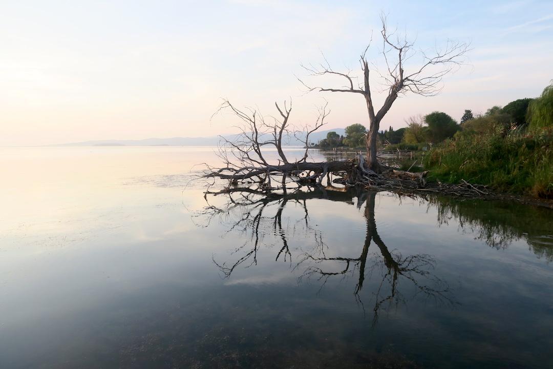 水鏡・夕景きれい トラジメーノ湖_f0234936_22205753.jpg