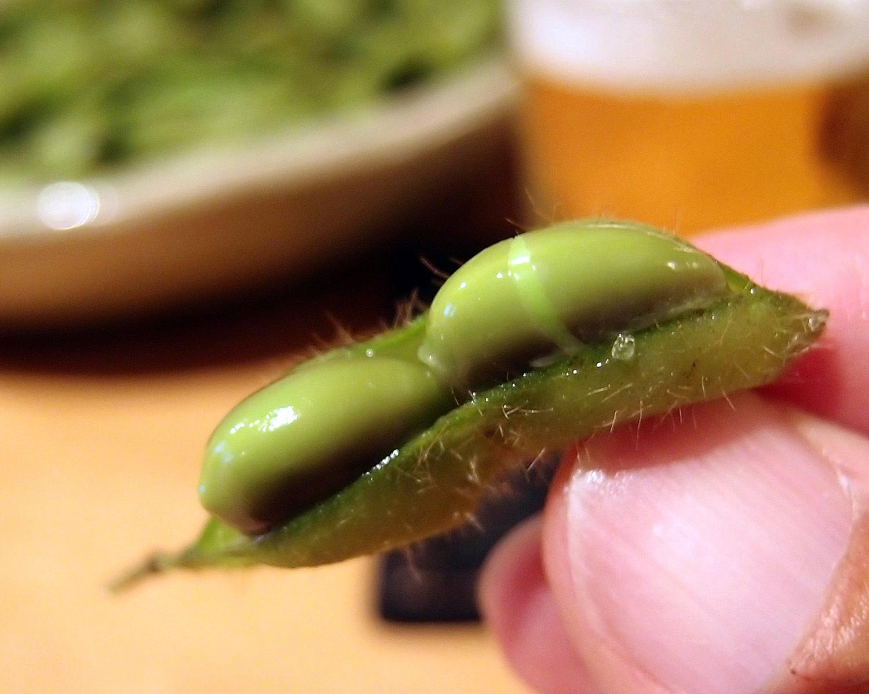 ダダチャを食わずして枝豆を語るなかれ。_b0340837_08584488.jpg