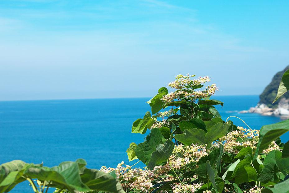 夏の終わり・海_c0067040_20312432.jpg