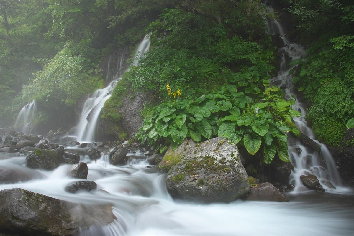 吐竜の滝 2_f0018464_16545157.jpg