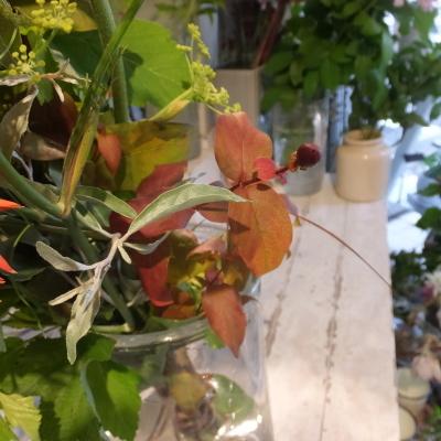 オークリーフ花の教室(赤地さんと宮原さんの作品)_f0049672_18291049.jpg