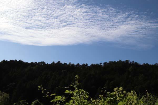 秋が始まっている 岩倉の棚田_e0048413_22244907.jpg