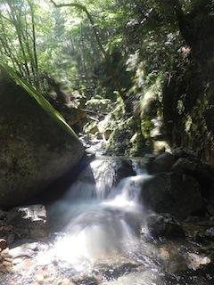 シャワー三昧の粥川は秋の気配_c0359615_21512695.jpg