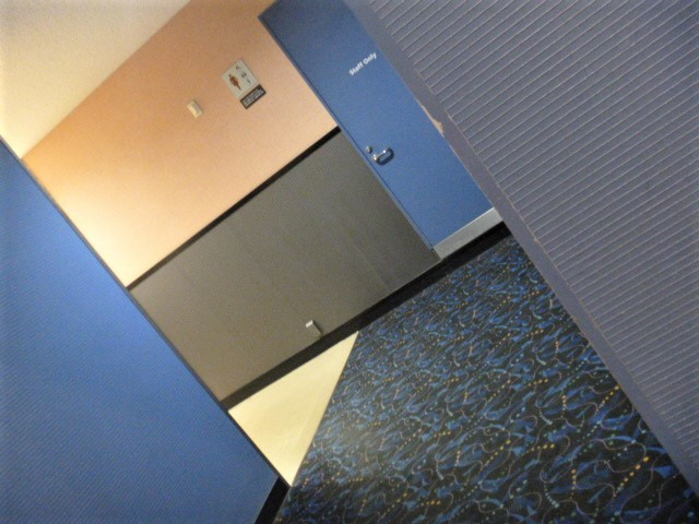 本物の方向音痴にとって魔のトイレと化す映画館のトイレ_d0137326_12473156.jpg