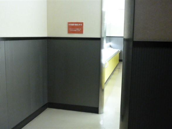 本物の方向音痴にとって魔のトイレと化す映画館のトイレ_d0137326_12474319.jpg
