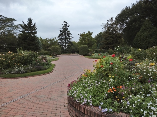 夏の公園_f0228967_16070930.jpg