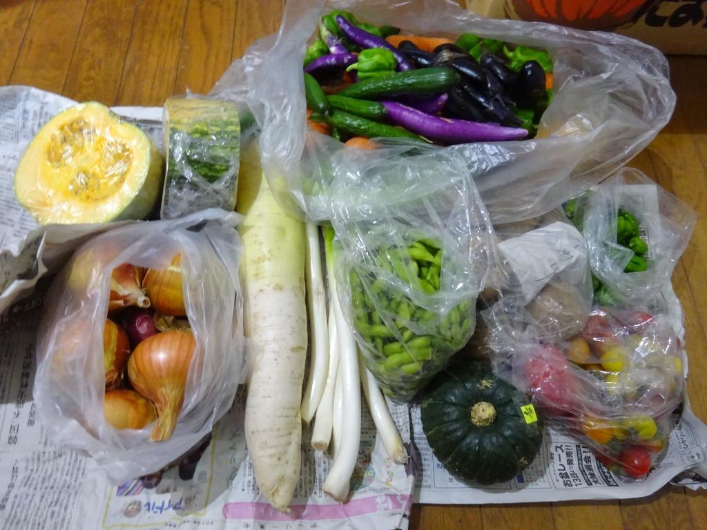 実家からの野菜2019 第三段!今回は枝豆が主力_d0061678_17211908.jpg