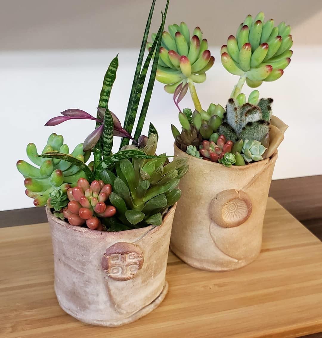 ◆秋の陶器市のお知らせ◆_b0398686_07493414.jpg