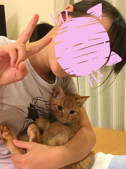 面会のお客様♬&茶太郎(元ちくわ)通信&_d0071596_00274399.jpg