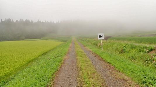 耐久山岳マラソンコースを走ってみました_c0336902_17164224.jpg