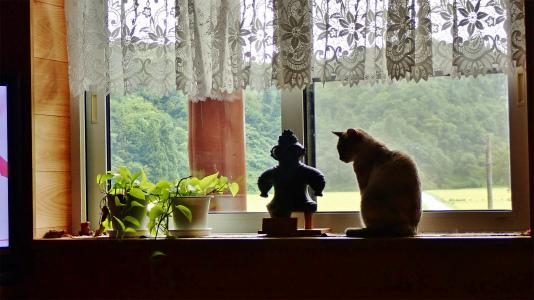 窓辺から何が見えますか?_c0336902_20093557.jpg