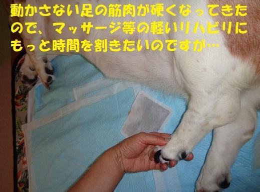 f0121712_14573231.jpg