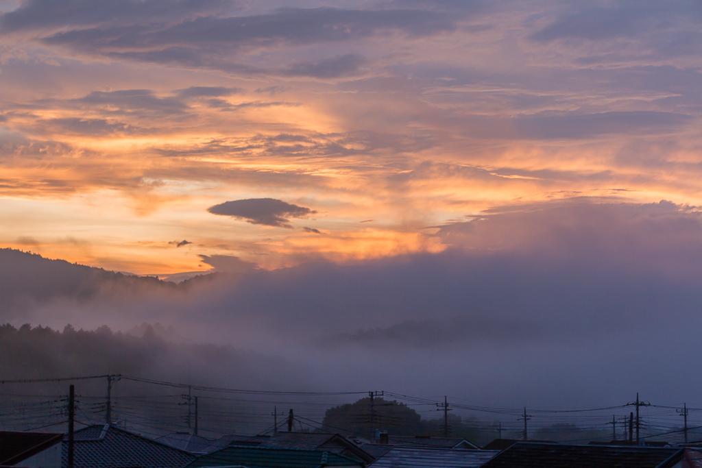 雨上がり後に一瞬の夕焼け@奥武蔵_b0010915_19060578.jpg