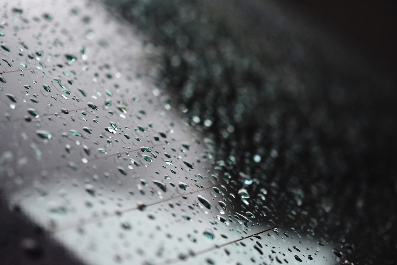 雨に歩けば・・・_d0065116_22081911.jpg
