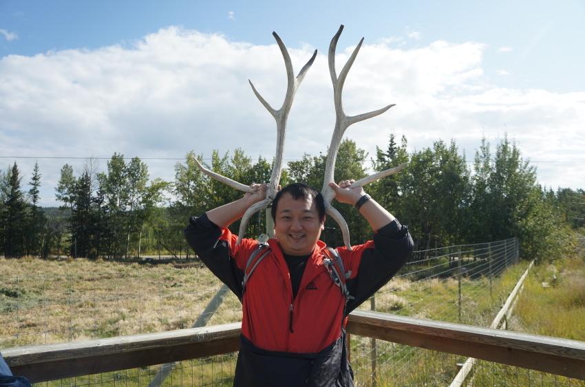 家族でユーコン旅。手付かずの大自然、野生動物とオーロラ_d0112928_12575694.jpg