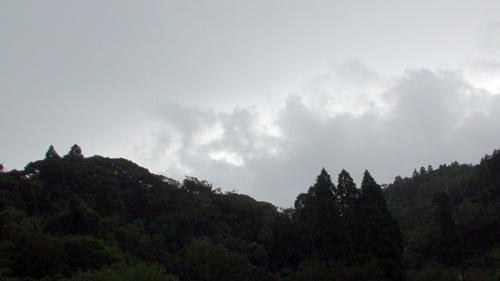 朝は大雨・・_a0123836_14463758.jpg