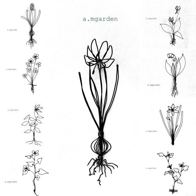 植物シリーズ纏め。_b0125443_15525488.jpeg