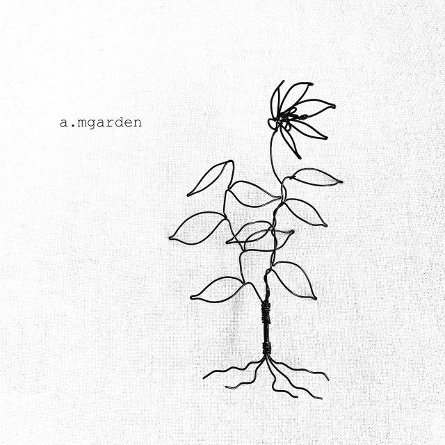植物シリーズ纏め。_b0125443_15564856.jpeg