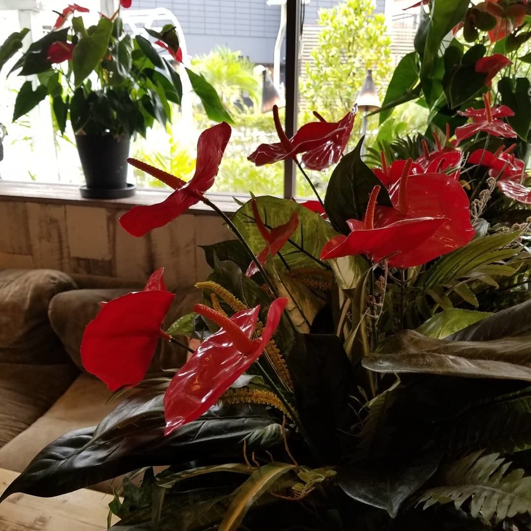 Kona\'s Coffee * まるでハワイなカフェの beach & peach フェア♪_f0236260_01085438.jpg