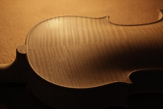 ホワイトヴァイオリンと、ハイビスカス_d0047461_05221066.jpg