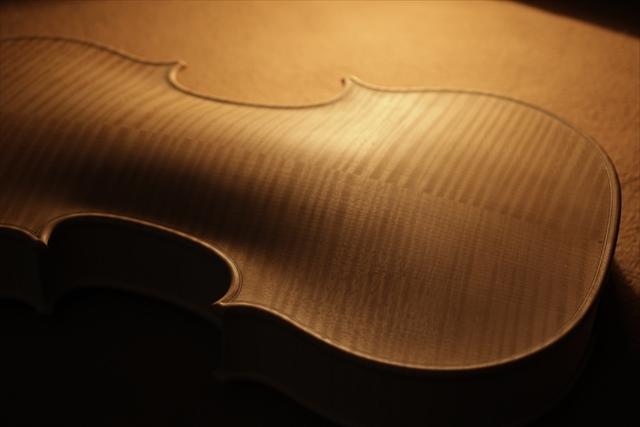 ホワイトヴァイオリンと、ハイビスカス_d0047461_05221820.jpg