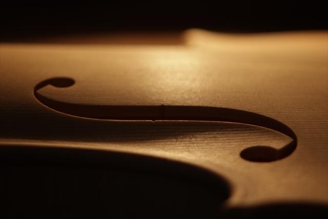 ホワイトヴァイオリンと、ハイビスカス_d0047461_05225304.jpg