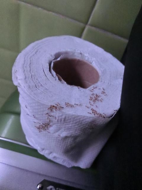 旅におけるトイレは戦場である その1_f0189467_15202877.jpg