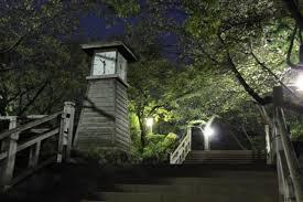 夏のおわりの夜中の散歩_d0339681_19504083.jpg